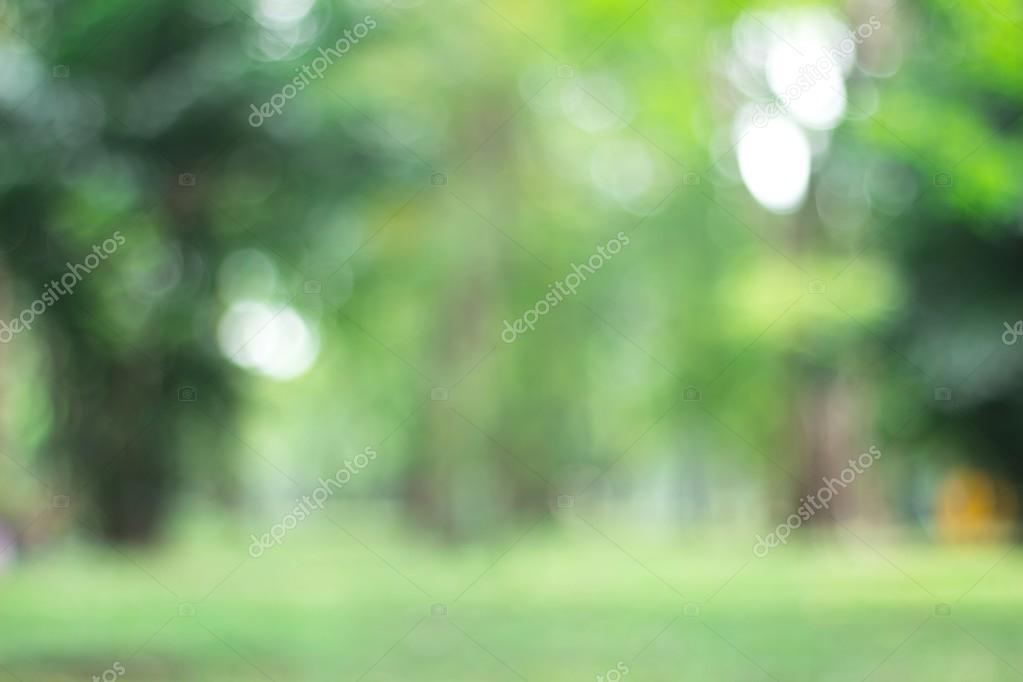 Green Nature Blurred Light Abstract Background Natural Outdoors Bokeh Blurred Forest Background Stock Photo C Ooddysmile 125584212