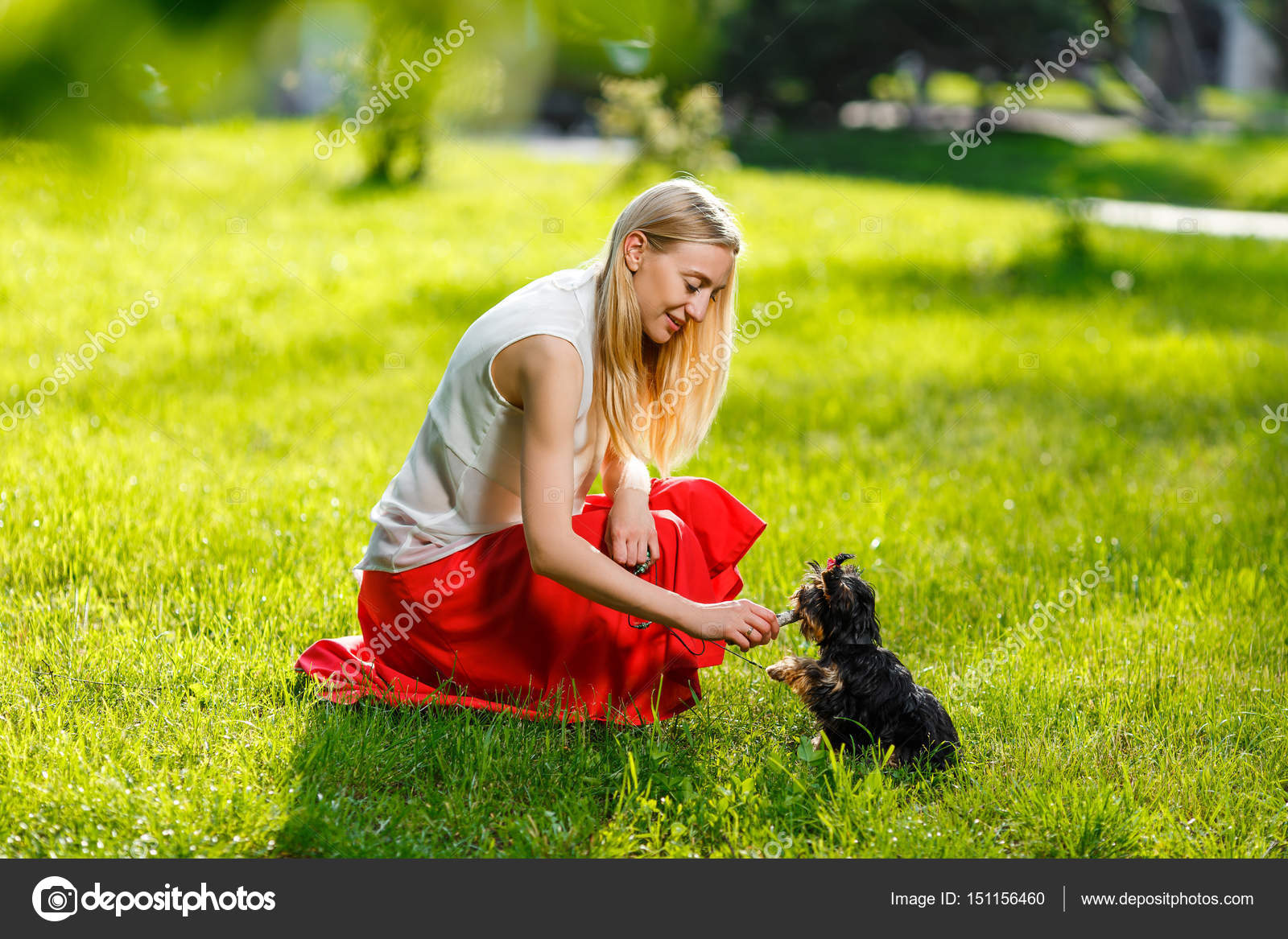 Captivating Coole Haustiere Collection Of Hund Und Seinem Besitzer - Cool Hund