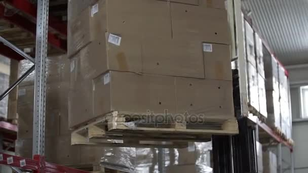 Vysokozdvižné vozíky vyložit palety s kartony na moderní Sklad