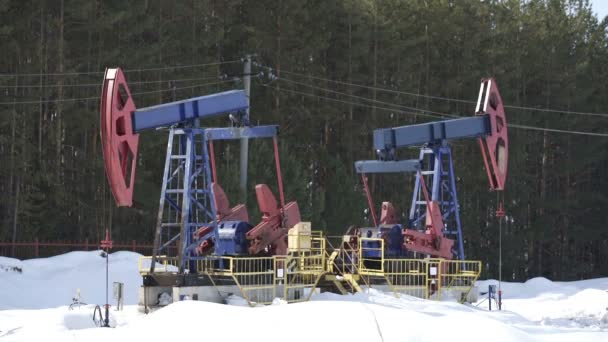 Oil pump jacks working and pumping crude oil for fossil fuel energy