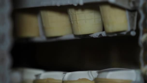 Close up of Ice cream production line. Desserts on conveyor belt. Food production process. Ice cream in manufacturing refrigerator
