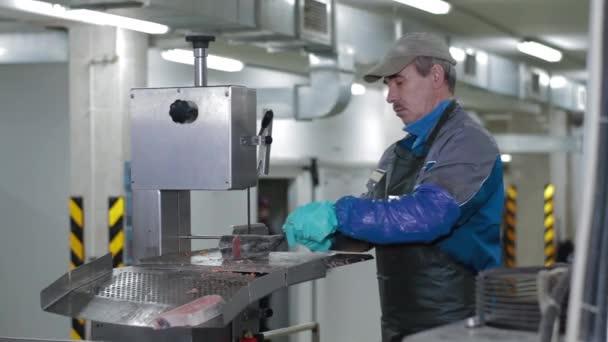 Ledová ryba je nakrájena továrním dělníkem v moderní továrně na ryby.