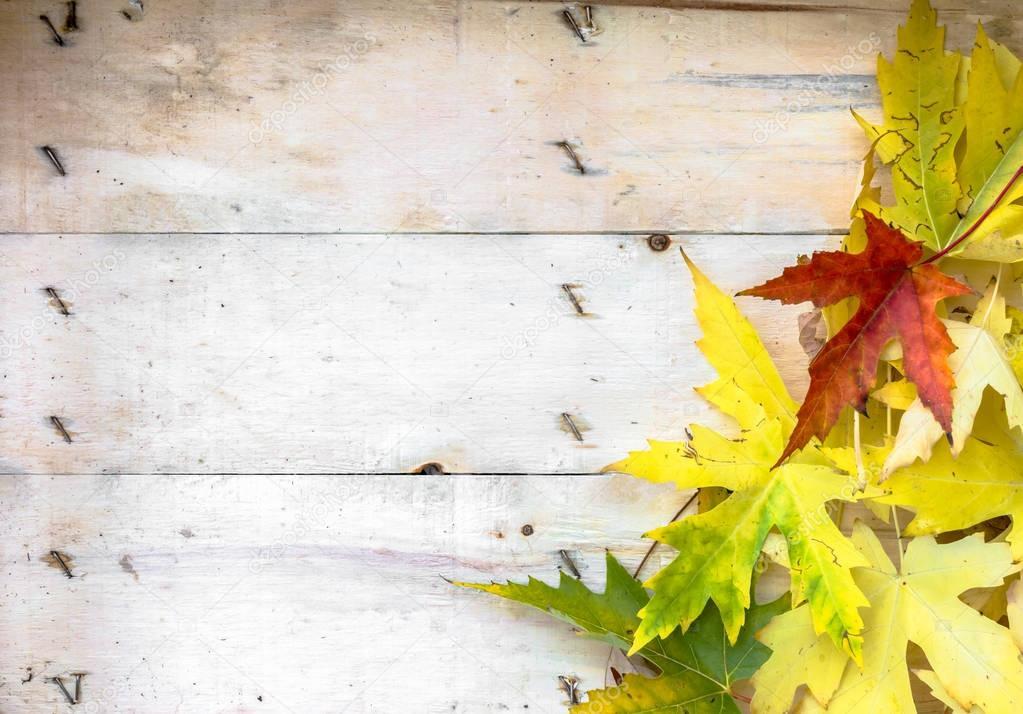Autumn leaves on wood planks