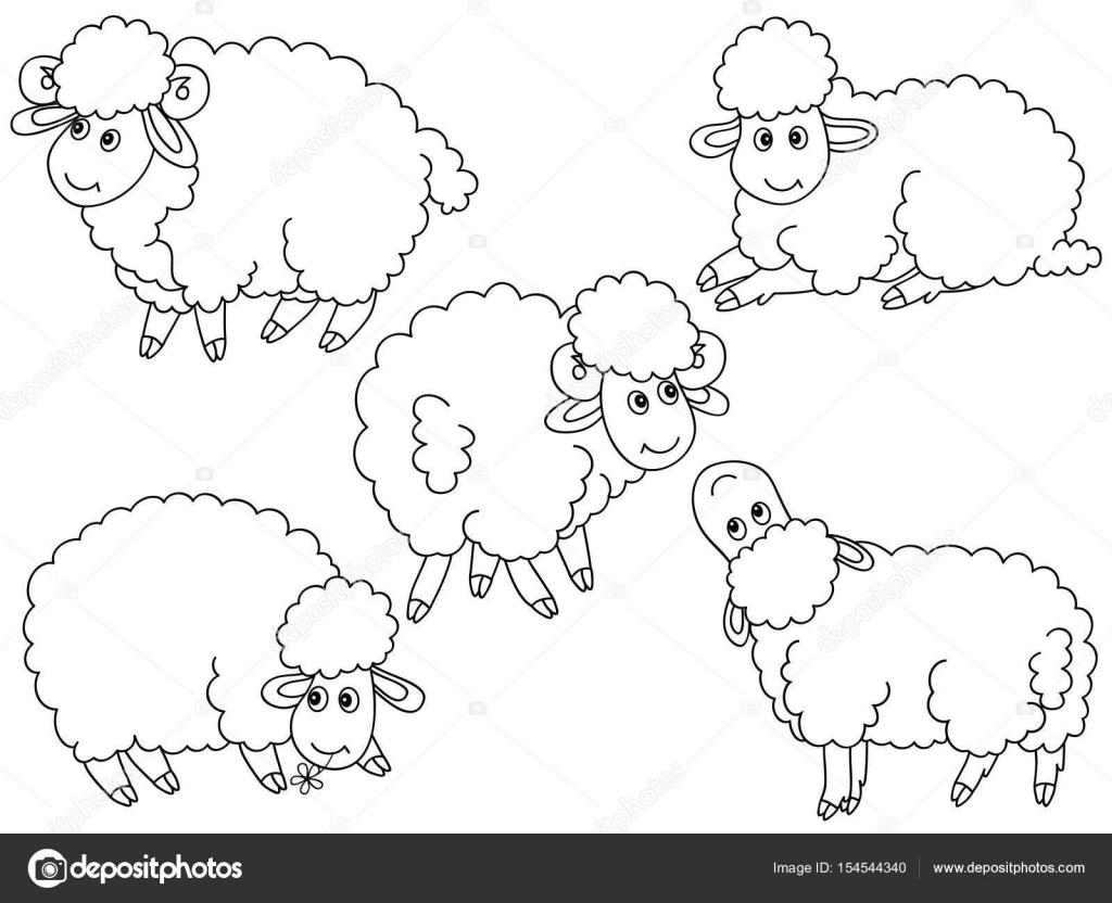 conjunto de vectores de ovejas — Vector de stock © marlenes9 #154544340