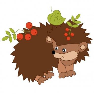 Vector Cute Cartoon Hedgehog with Leaves and Berries