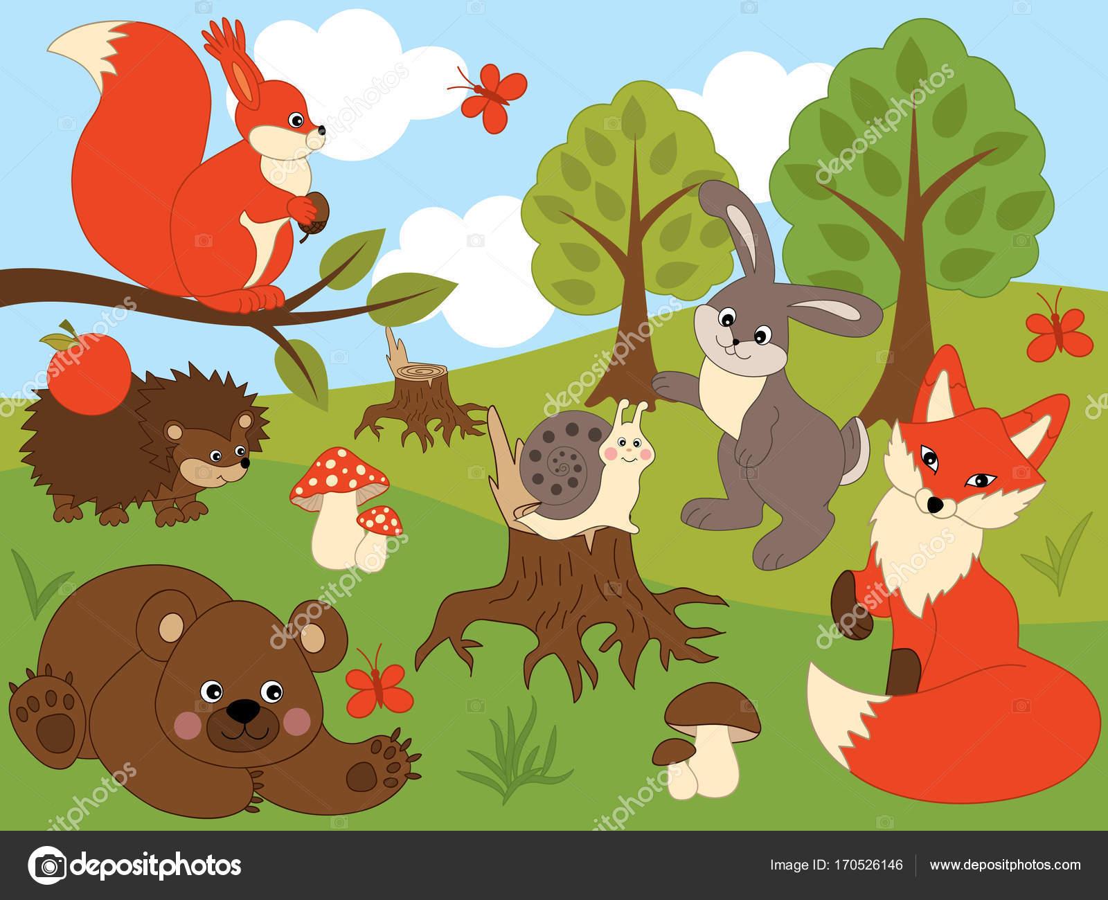 Fotografie bosco vettoriali animali del bosco vettoriale