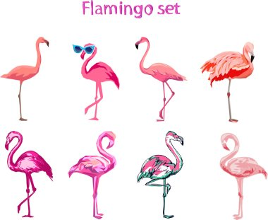set of cartoon flamingos