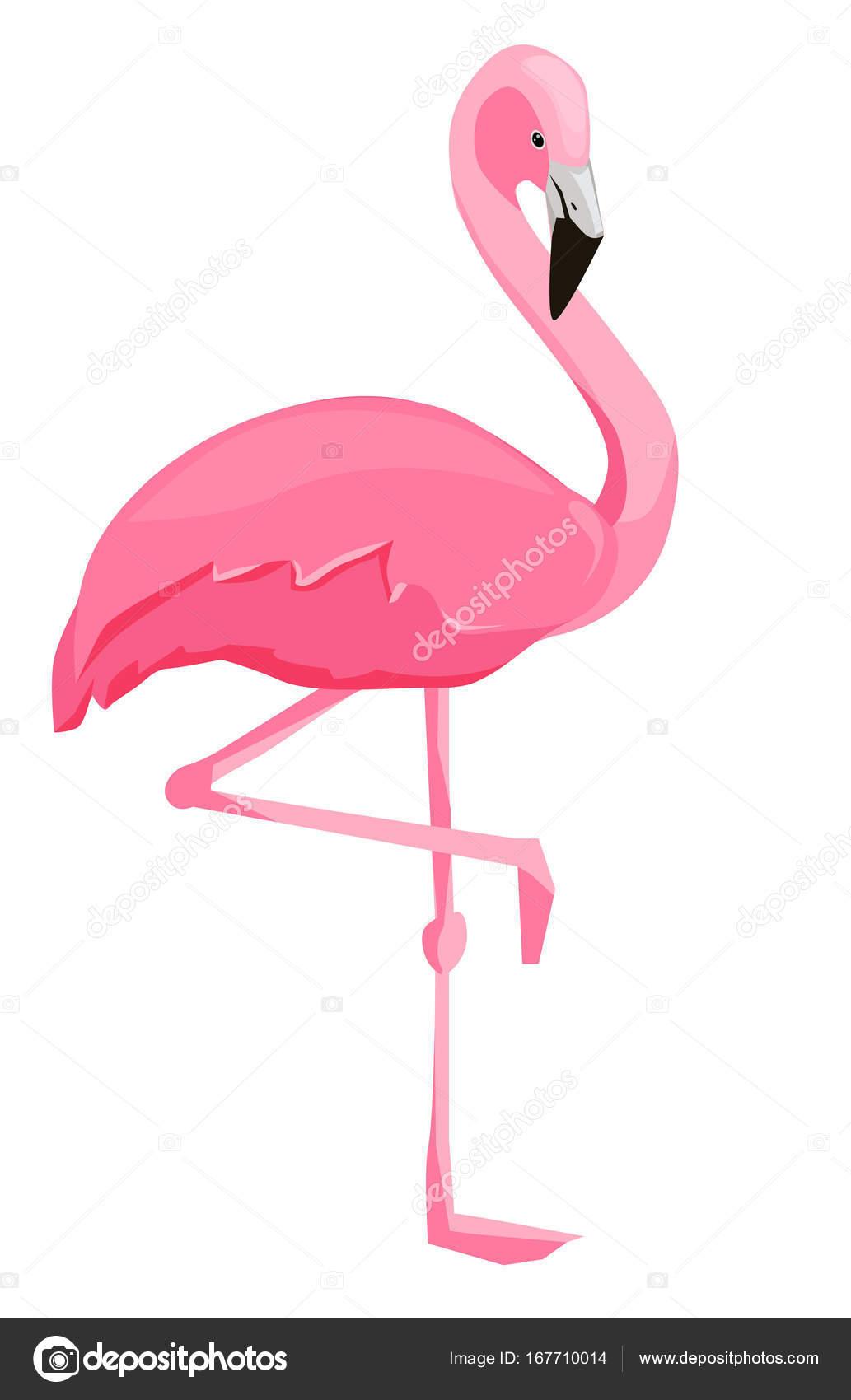 Flamant rose adorable dessin animé — Image vectorielle ...