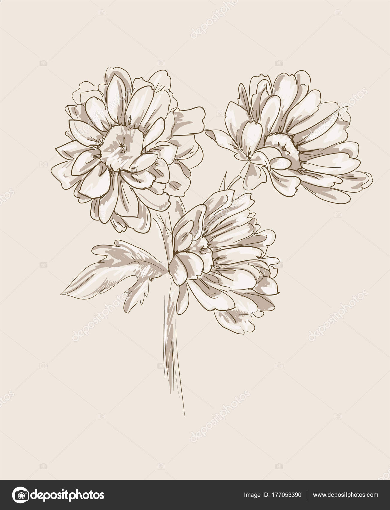Hand drawn sketch beautiful flowers vector illustration stock hand drawn sketch beautiful flowers vector illustration stock vector izmirmasajfo