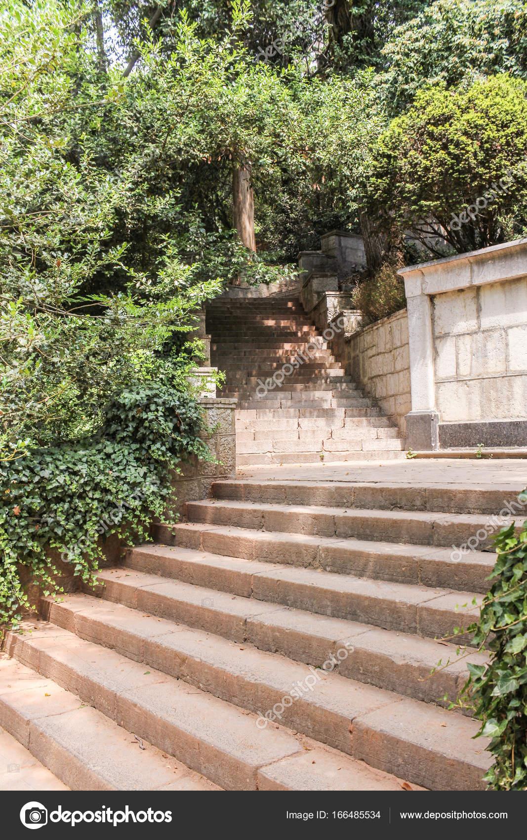 stein-treppe im garten — stockfoto © nikey #166485534