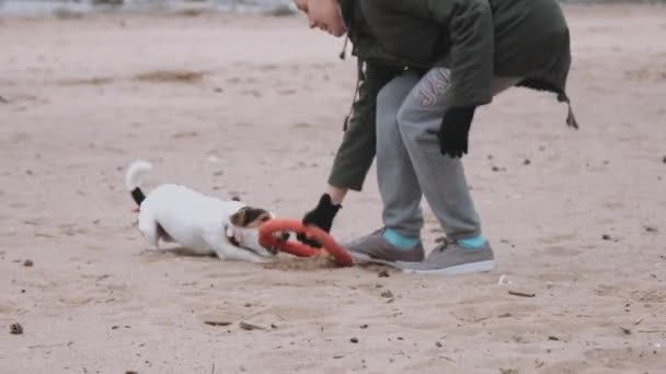 Woman playing with dog on the sea shore