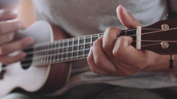 Személy játszik a ukulele gitár belül