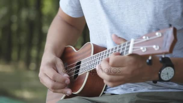 Person playing on little ukulele guitar