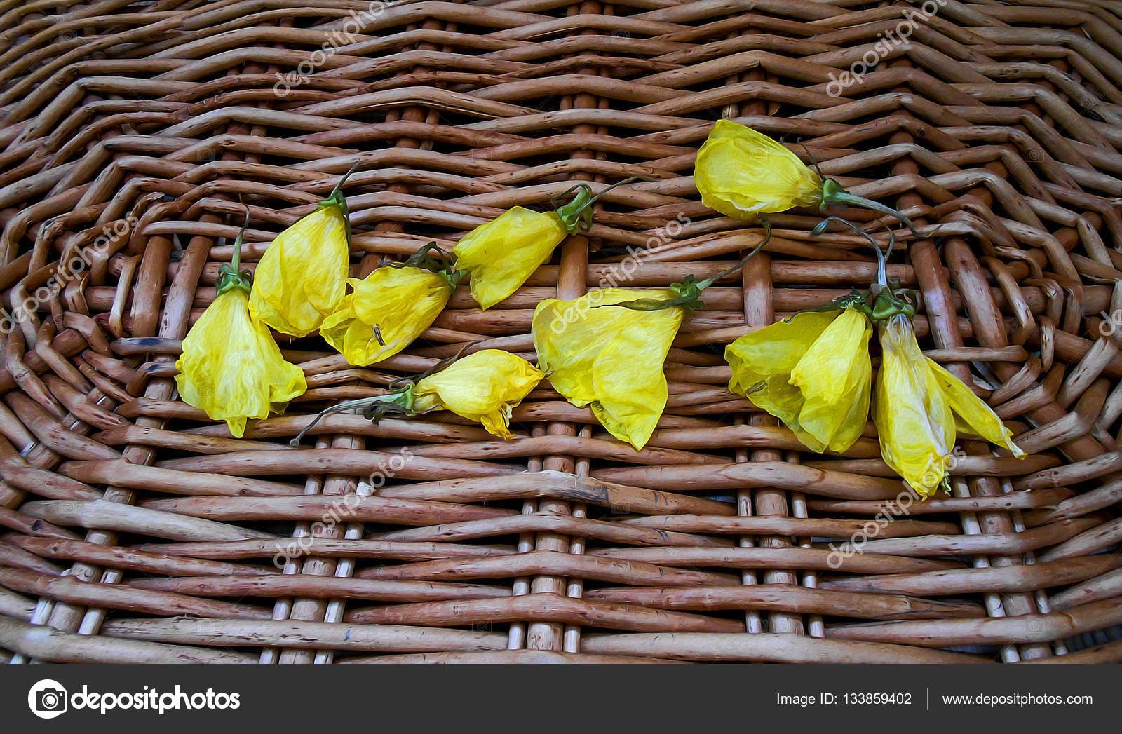 gelbe Stockrose frisch gefrorene Blume, Foto-manipulation ...