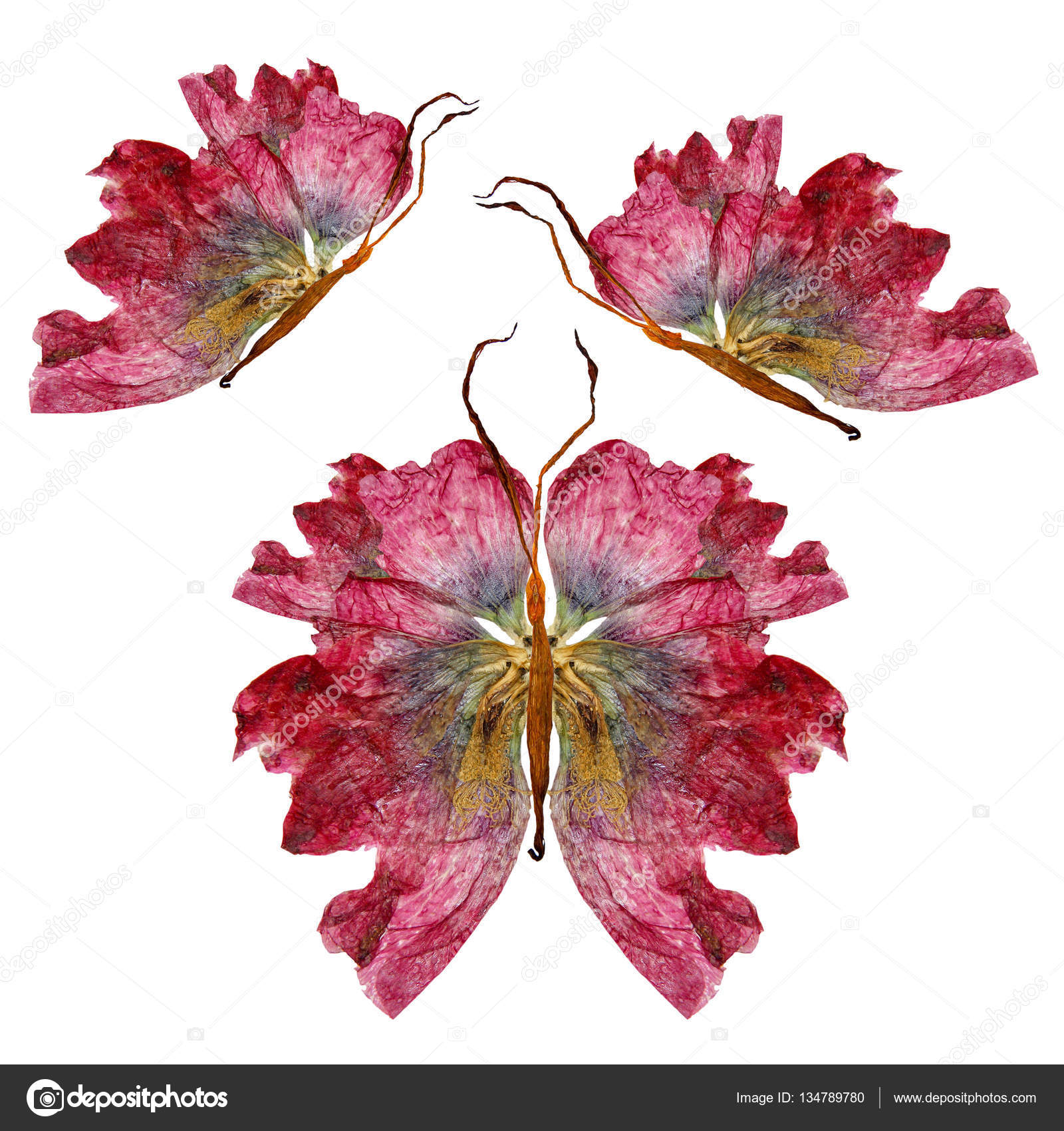 floral butterfly made of lily petals leaves and flowers stock