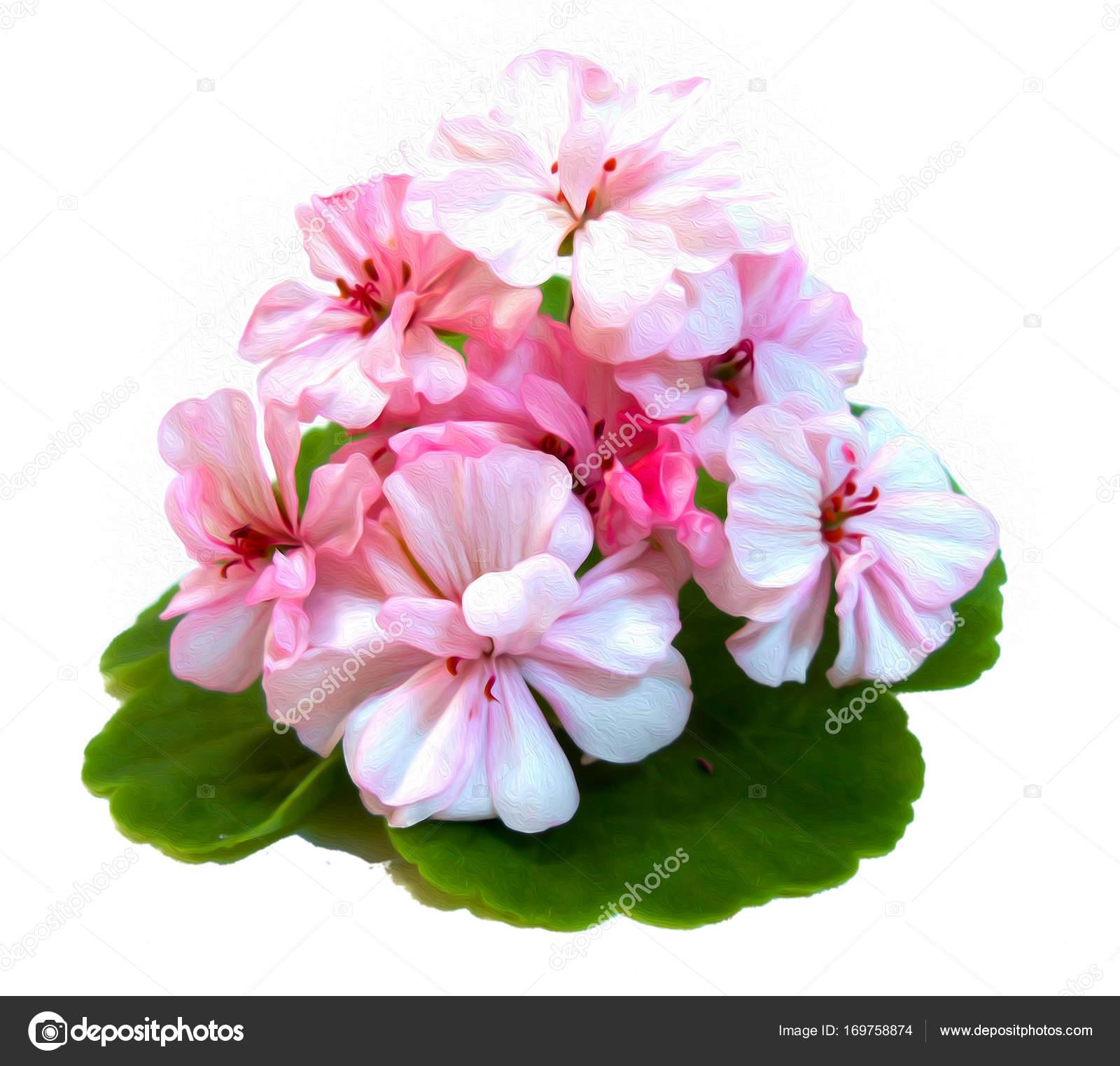 Цветы в форме фото