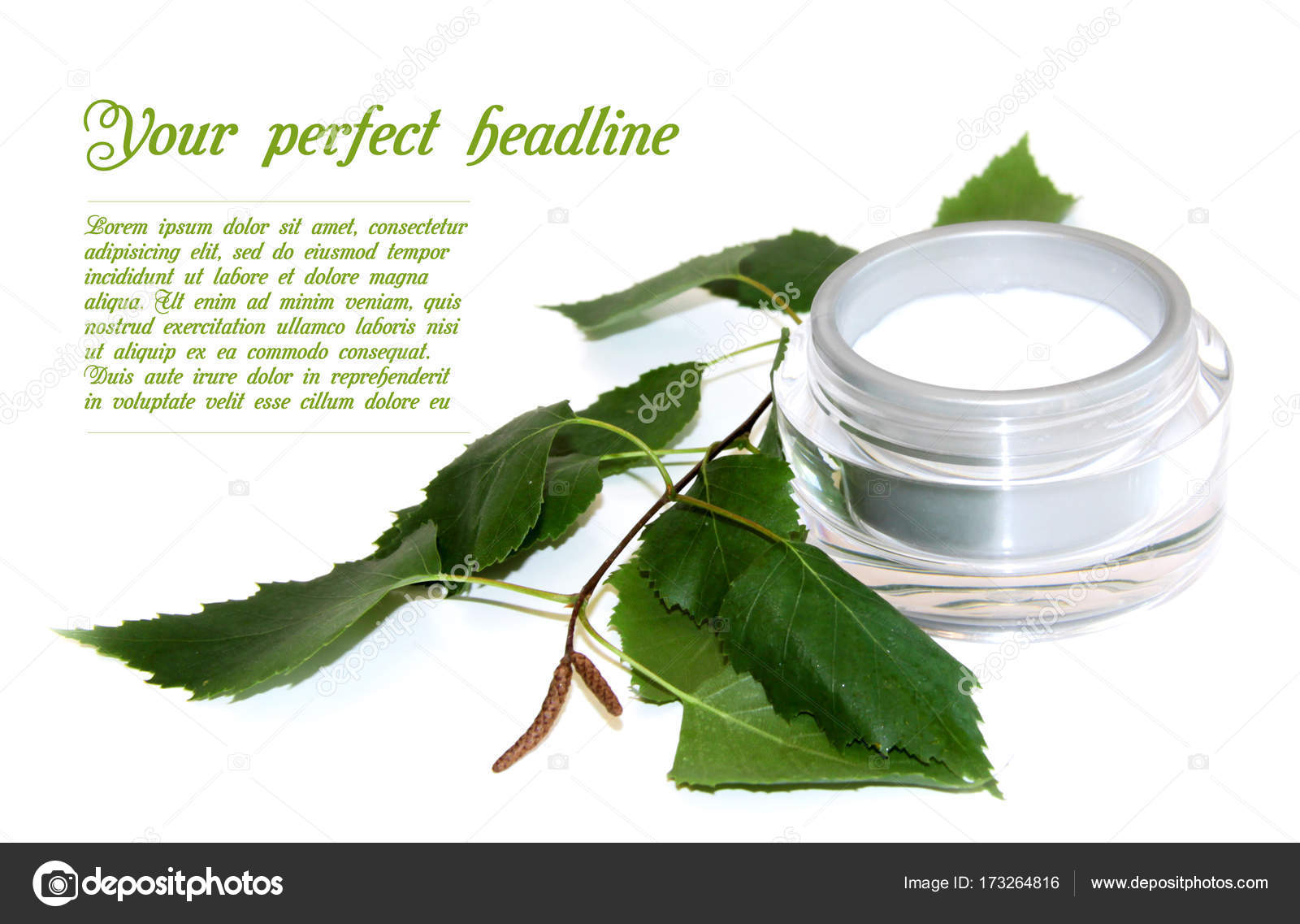 Container of natural cream and fresh birch brunch with green lea