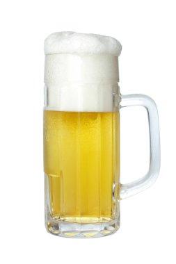 Beer in beer mug