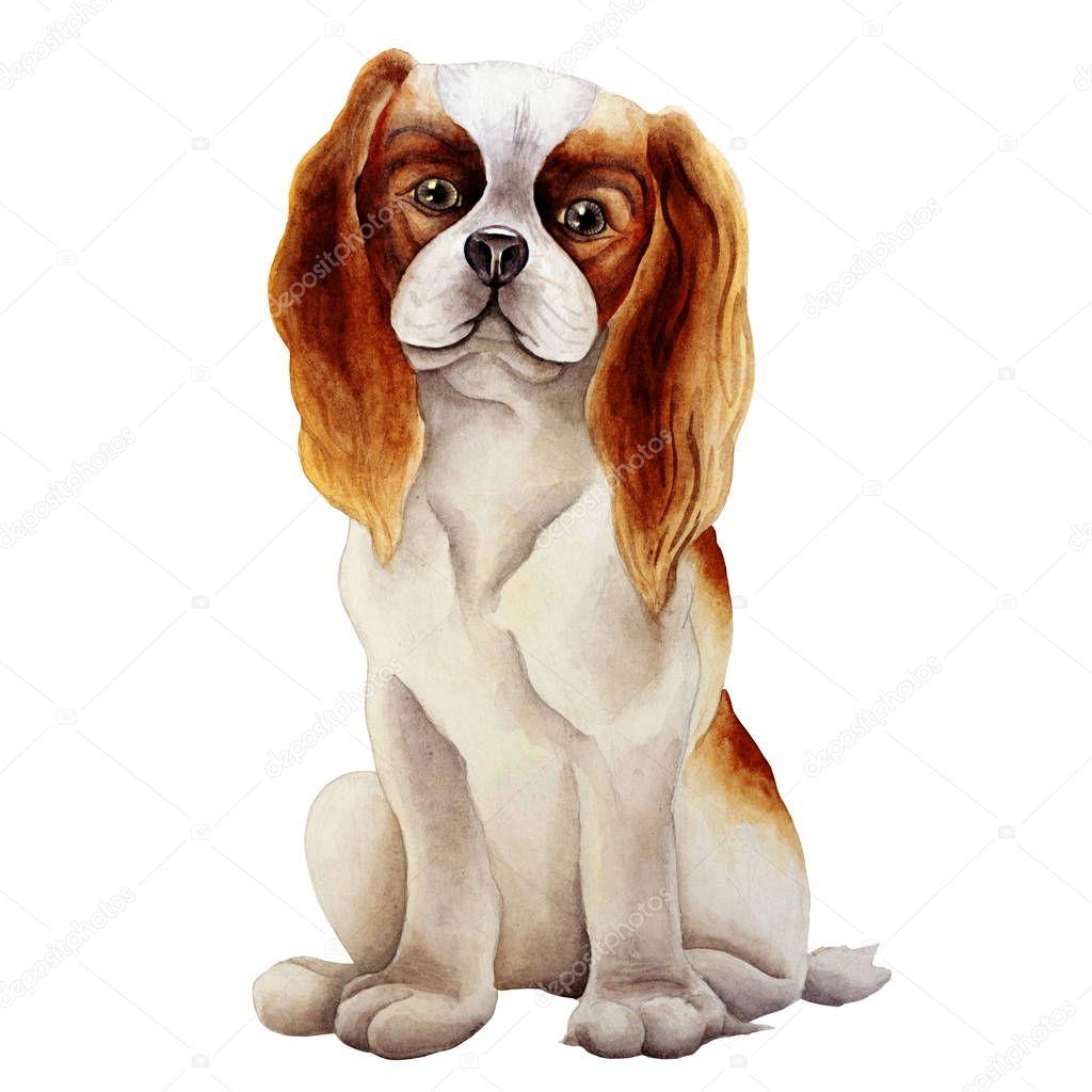 Dog watercolor image
