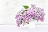 Mazzo di fiori lilla in vaso bianco su priorità bassa bianca. Priorità bassa di festa, lo spazio della copia. Festa della mamma, concetto di compleanno. Sfondo primavera.