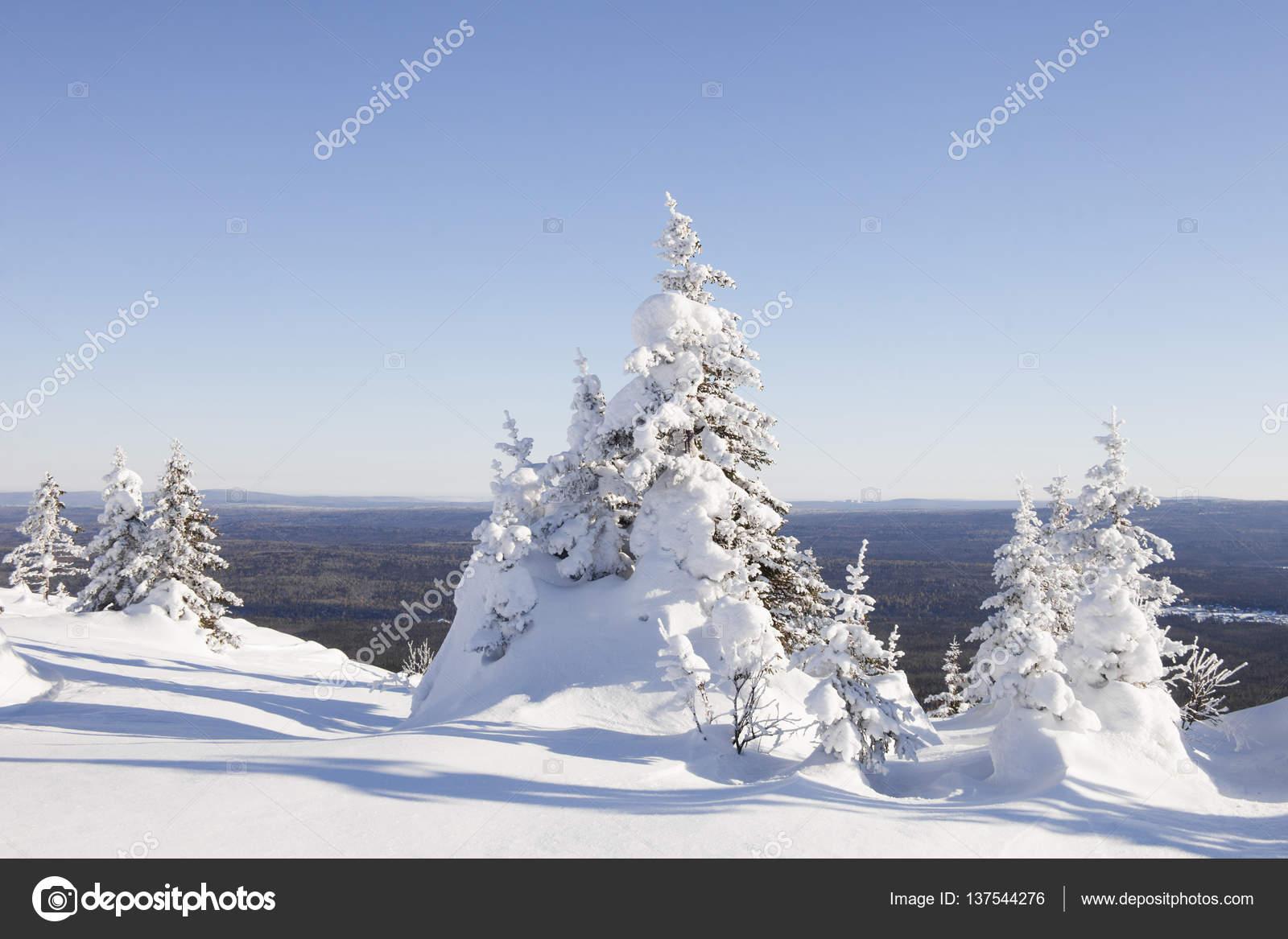 Paysage Dhiver Chaîne De Montagnes Zyuratkul Tre De Sapin