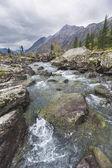 Shumi. Paesaggio di autunno di Monti Altai