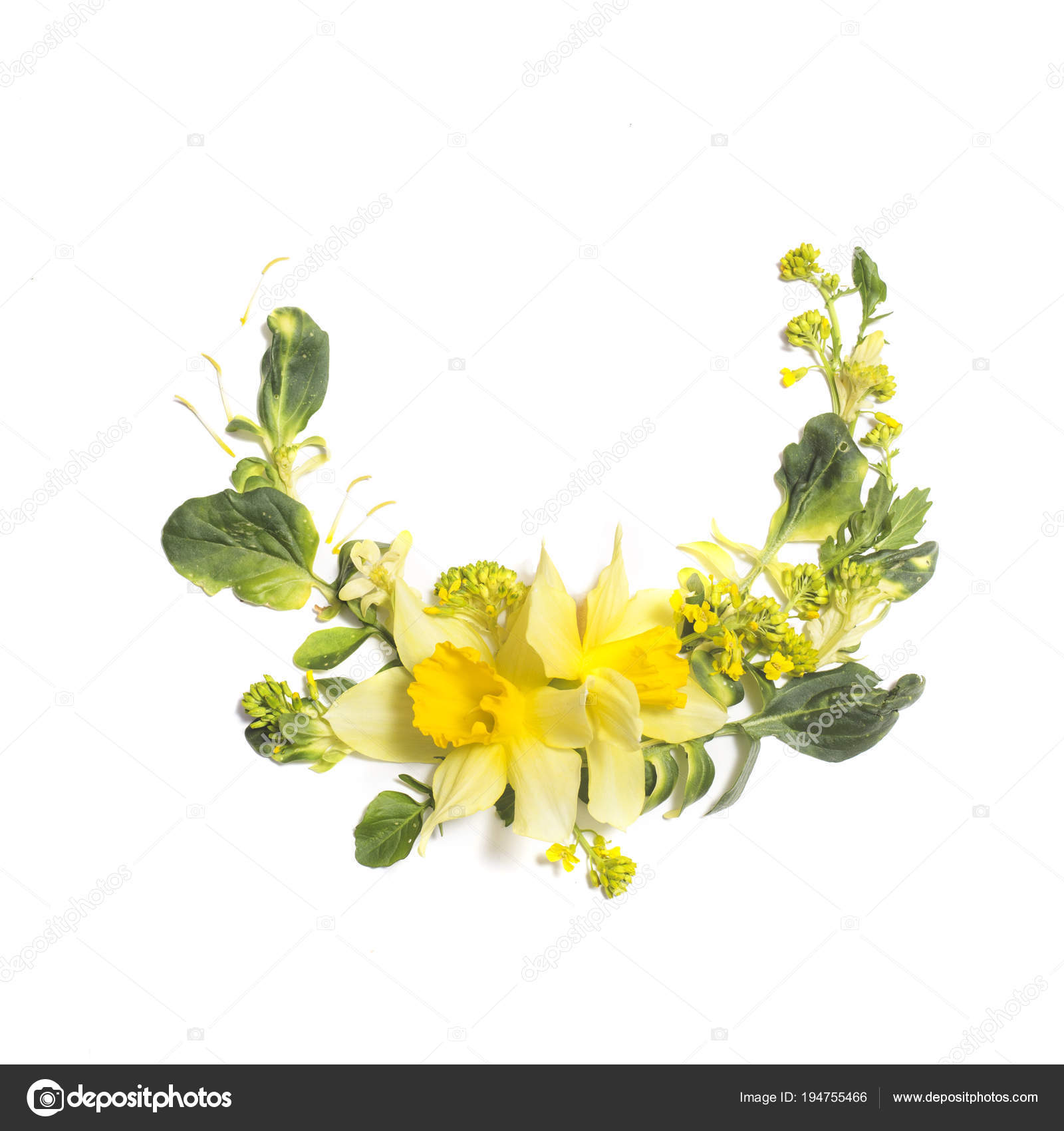 Floral Composition With Yellow Flowers On White Background Stock
