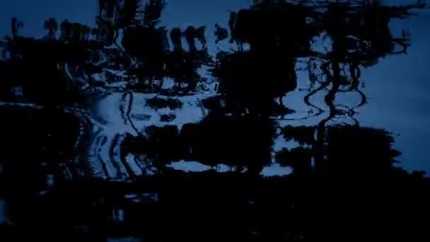 Moody lesní odraz ve vodě v noci