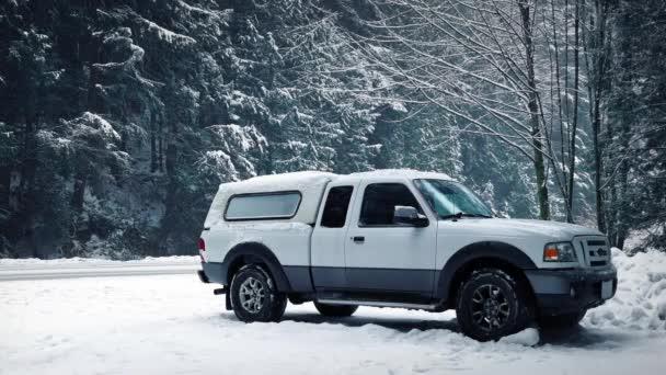 Auto zaparkované v lese Sněžná, projíždějících vozidel