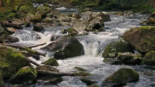 Cyklických Shot Scenic řeky