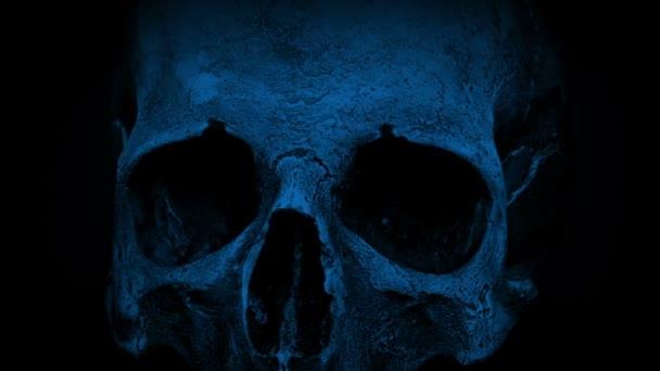 Alten menschlichen Schädel In der dunklen Closeup Schleife drehen