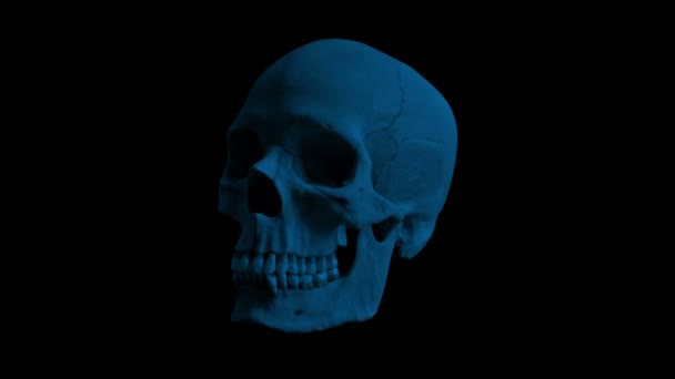 menschlicher Schädel dreht sich in der dunklen Schleife