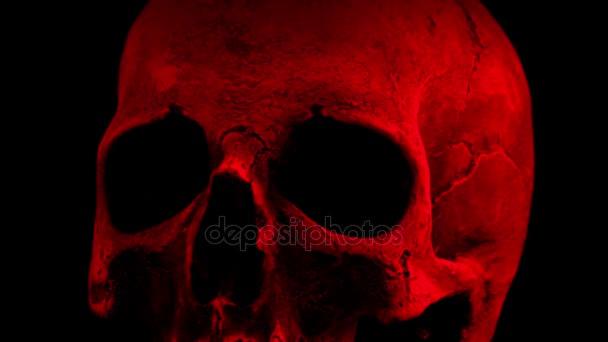 Red Old Skull Rotating Closeup Loop
