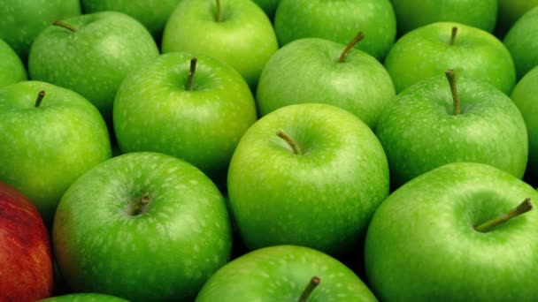 Red Apple In Green Apples - Business Concept