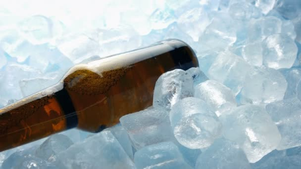 Beer Bottle In Ice Cubes Moving Shot