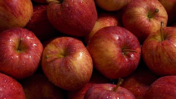 Passing Washed Clean Red Apples