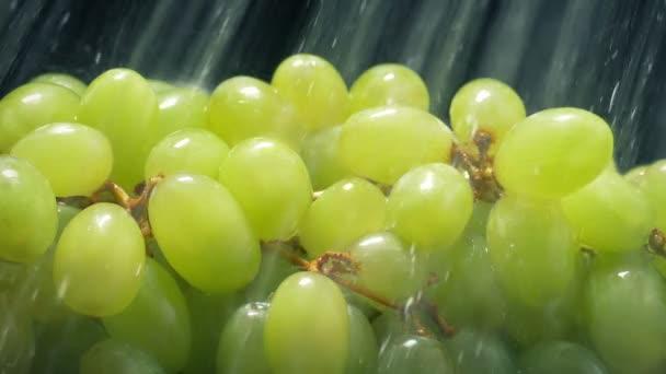 Lédús zöld szőlő kap mosott víz spray