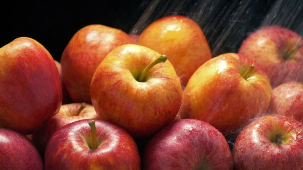 Apples Get Washed In Water Spray