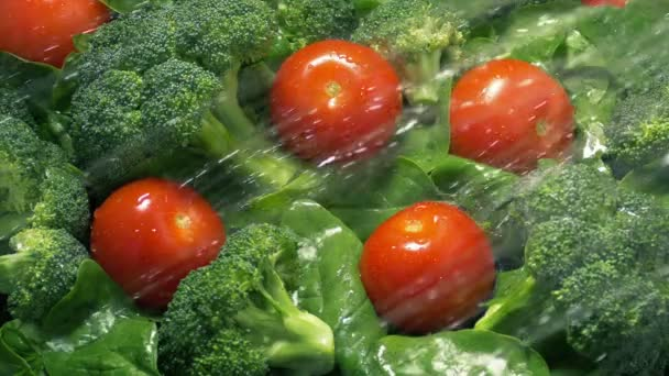 Zdravý salát směs dostane opláchne vodou
