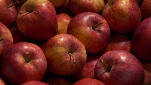 Red Apples Are Sprayed Kept Fresh At Supermarket