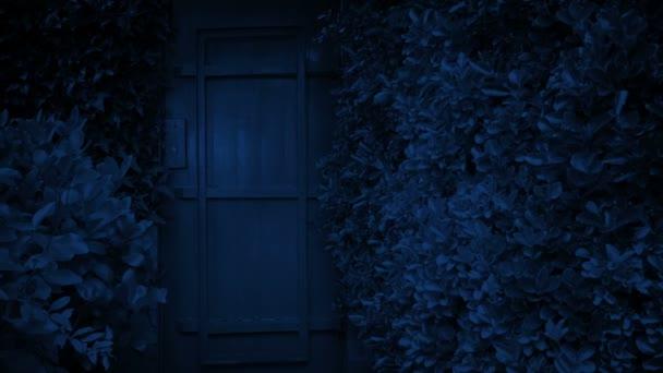 Passing Garden Door At Night