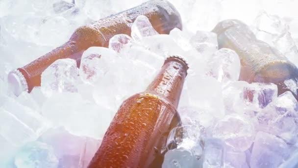 Bier auf Eis bei Party-Veranstaltung