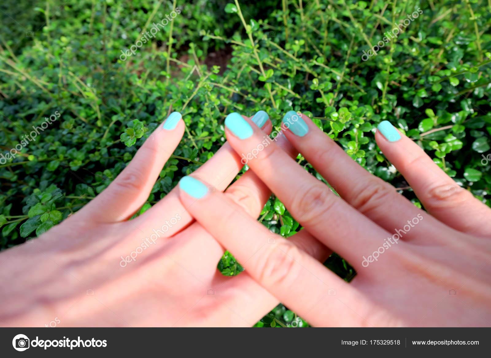 Cerrar Uñas Manicura Verde Hermosas Hembras Mano Uñas Polaco Fondo ...