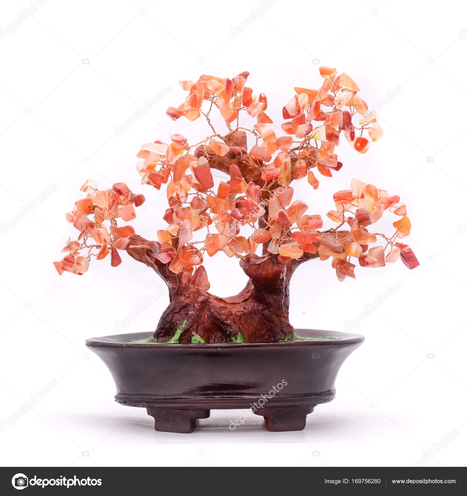 Bonsai Tree With Stones Isolated On White Stock Photo Vi0222