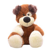 Fotografie Plyšová hračka medvídek izolované na bílém