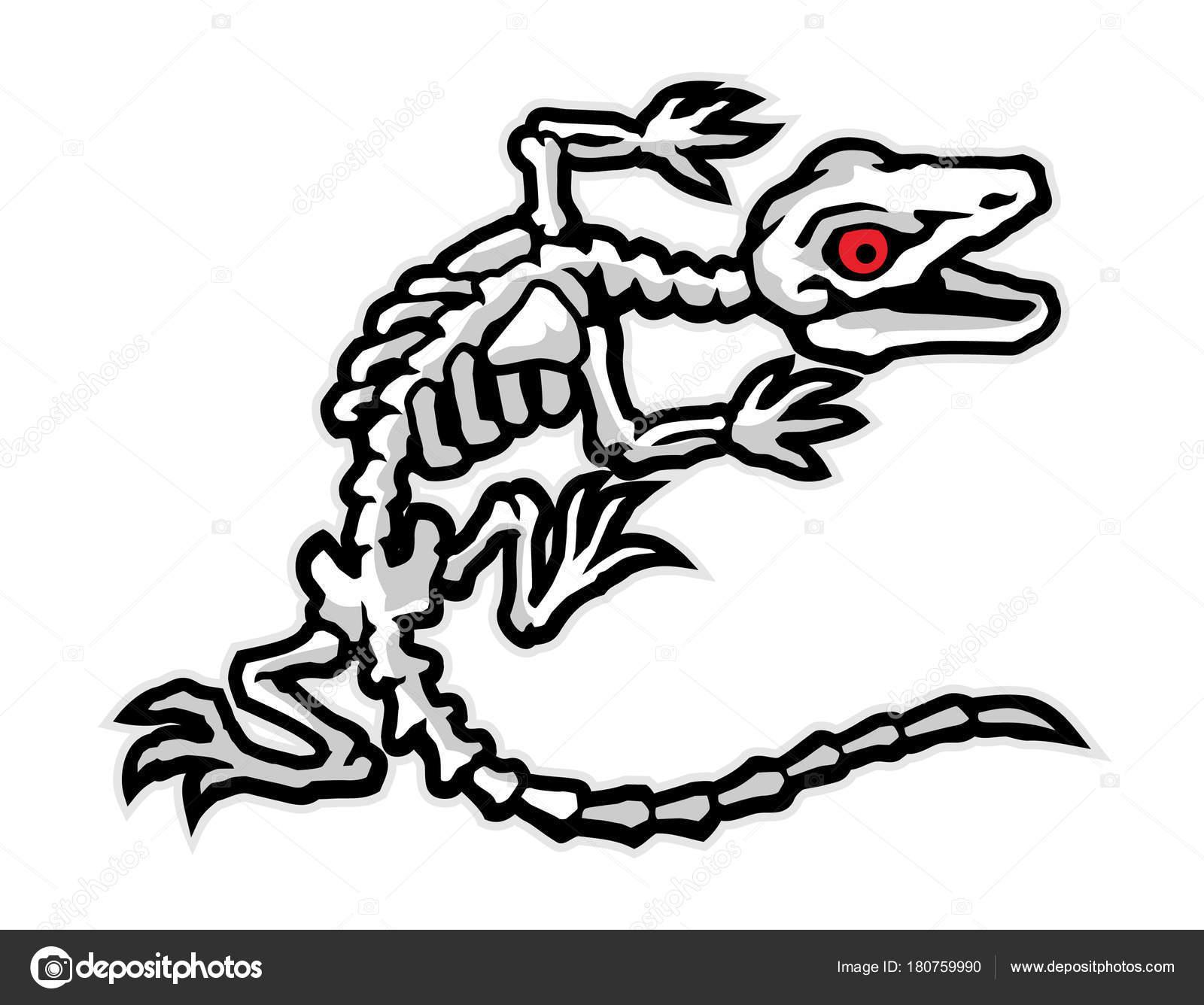 Huesos Lagartija Cartoon Can Uso Ilustración Logo Camiseta — Archivo ...
