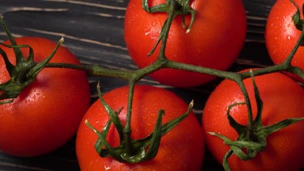 Hromada zralých šťavnatých rajčat pokrytých kapkami vody.