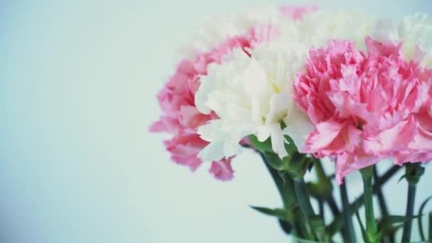 Květiny, rotace na bílém pozadí, květinová kompozice se skládá z karafiát