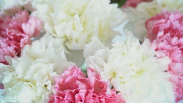 Virágok, forgatás, fehér háttér, virág kompozíció áll, szegfű
