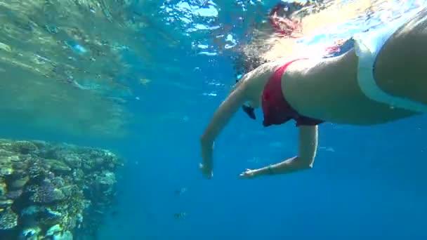 Mädchen schnorchelt unter Wasser im Korallenriff.